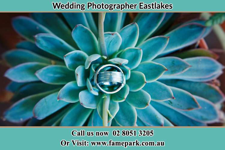 Photo of the wedding ring design at the top of the plant Eastlakes NSW 2018