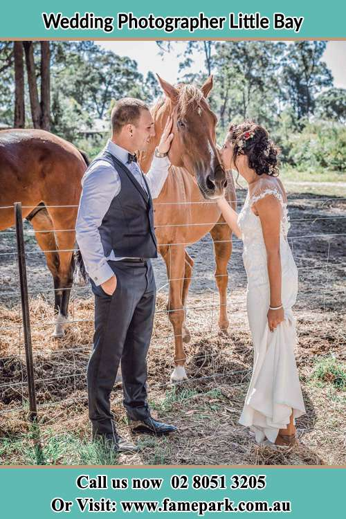 Photo of the Groom holding the horse while kiss by the Bride Little Bay NSW 2036